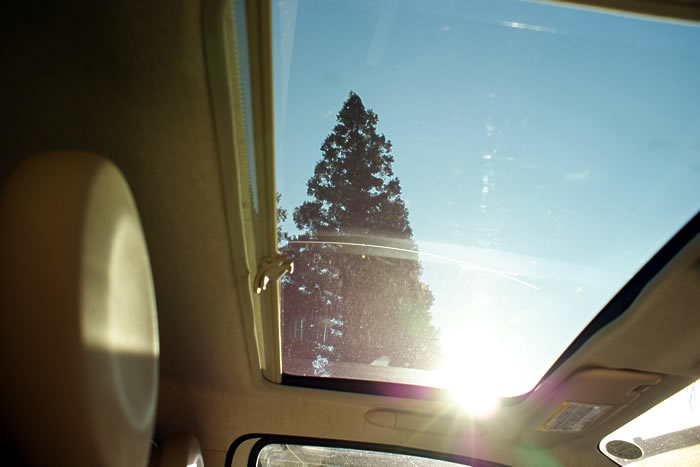 FIAT500でドライブ。ガラスルーフで暖かくて開放感抜群!